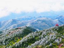 戴云山国家自然保护区
